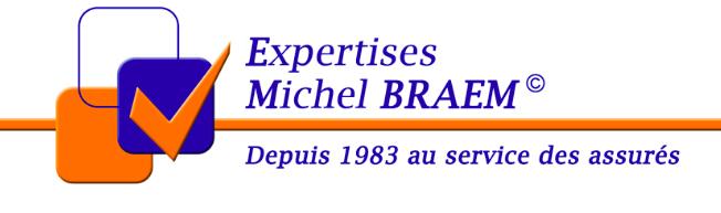 logo Expertises Michel Braem
